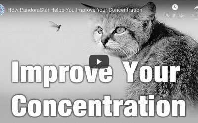 How to improve your concentration with PandoraStar